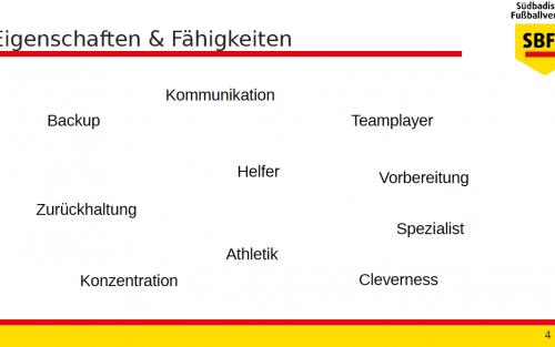 Was macht einen (sehr) guten Schiedsrichter-Assistenten aus? 3